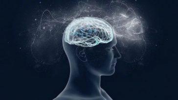 como treinar seu cerebro imagem
